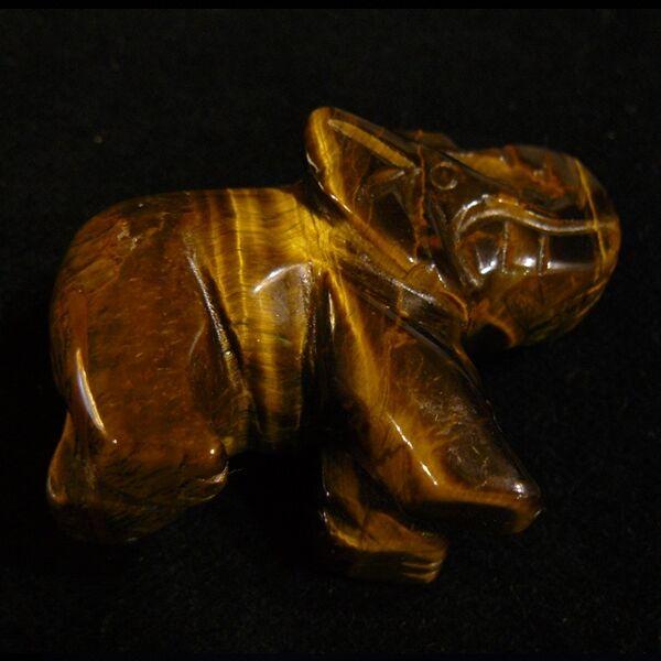 Tigrisszem elefánt